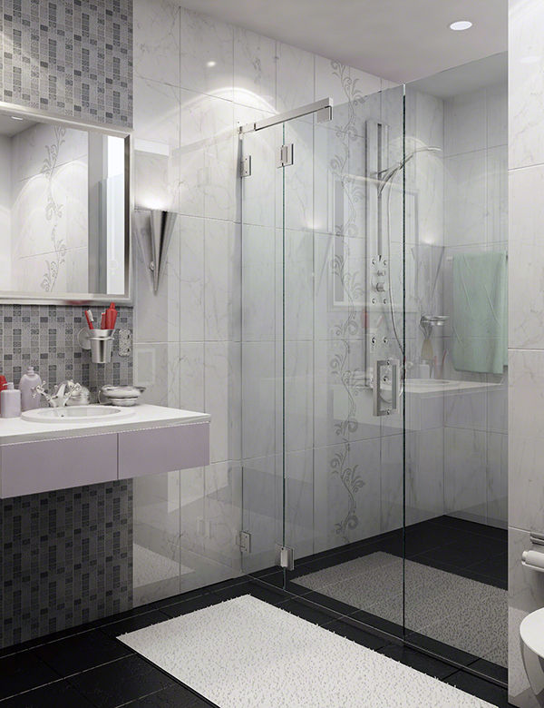 C R Laurence S Clear Space Elliptical Shower Door System